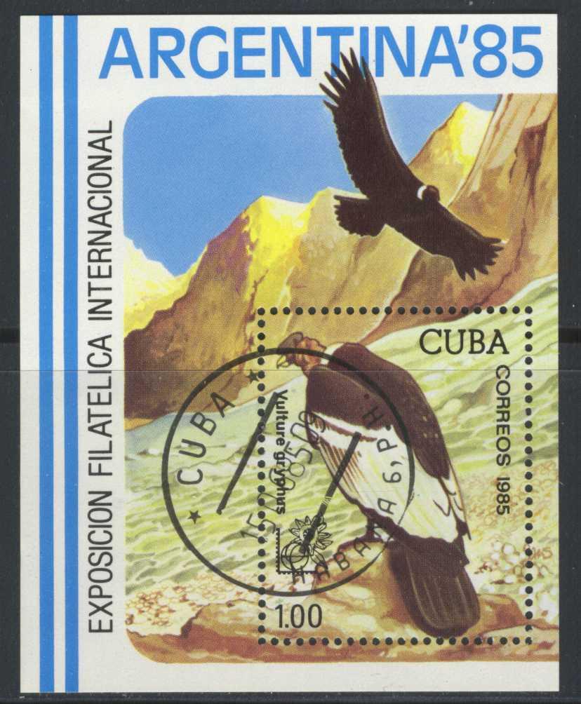 Partnervermittlung Kuba Condor